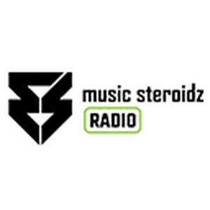 Radio Ms Radio Suriname