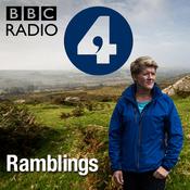 Podcast Ramblings