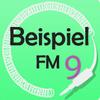BeispielFM 9
