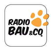 Radio Radio 105 - Bau & Co