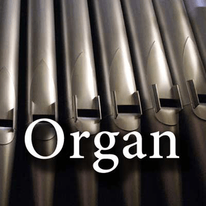 Radio CALM RADIO - Organ