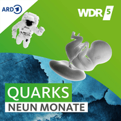 Podcast WDR 5 Quarks - Neun Monate
